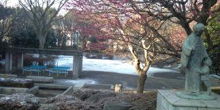 薄い雪化粧☆アツ☆